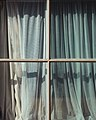 Window (Unsplash).jpg