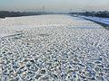 Wisła skuta lodem - Warszawa.jpg