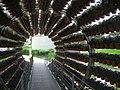 Wolfsburg Jun 2012 042 (Autostadt - Dufttunnel).JPG