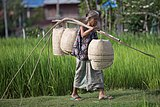 Woman under yoke carrying wicker baskets (2).jpg