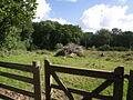 Woodpile - geograph.org.uk - 494458.jpg