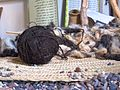 Wool at the folk museum (6408202961).jpg
