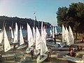 Y.c. vega -regatta st. nicholas - panoramio.jpg