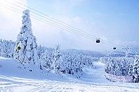 Yamagata-zao ski 1 (200712).jpg