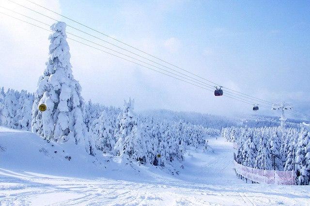 Yamagata-zao ski 1 (200712)