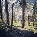 Yosemite (14545312174).jpg