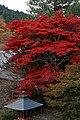 Yoshimine-dera (8256314908).jpg