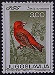 Yugoslavian stamp with Loxia curvirostra 1968.jpg