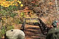 Zoar Valley overlook near Forty Road parking area, Town of Persia, New York, October 2012.jpg