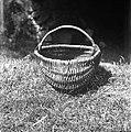 """""""Korpca"""" ali """"kašar?nca"""" (košarica) za pobiranje jabolk itd. Ima leskov ročaj """"locaj"""", vse ostalo iz leščevine, 30x26cm. Gradenc 1957.jpg"""
