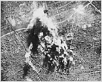 """""""Photograph made from B-17 Flying Fortress of the 8th AAF Bomber Command on 31 Dec. when they attacked the vital CAM bal - NARA - 535712.jpg"""