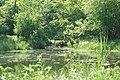 """""""Piekiełko"""" - panoramio (1).jpg"""