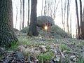 """""""Thors Amboss - die steinerne Himmelsscheibe von Neusalza-Spremberg"""" Tagungnachtgleiche Sonnenaufgang.jpg"""
