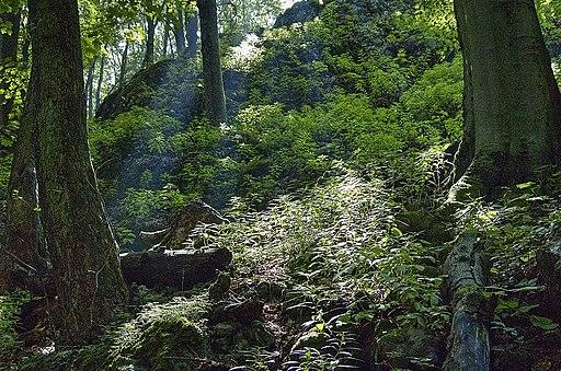 Čertov žľab, Malé Karpaty