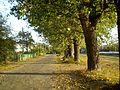 Восеньскі настрой - panoramio.jpg
