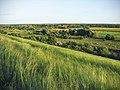 Краєвид з приліпської гори на заказник Хорішки (за селом Приліпка).jpg