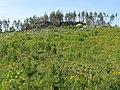 Малые Черти (Glade near Chertovo Gorodishche) - panoramio (1).jpg