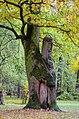 Одне з дерев групи багатовікових дубів, м. Чернігів, Центральний парк.jpg