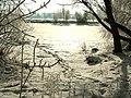 Оз.Левiш - panoramio.jpg
