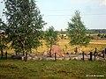 Памятник расстрелянным жителям деревни - panoramio (1).jpg