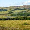 Район хребта Янганапэ, Ямал - panoramio (4).jpg