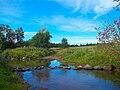 Река Дивенка недалеко от деревни Тозырево.jpg