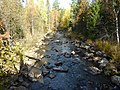 Речка Большой Катав - panoramio.jpg