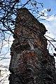 Рештки замку в с.Тайкури.jpg