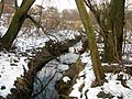 Ручей. Левый приток реки Молодечанка. Creek. Molodechanka left tributary of the river. - panoramio.jpg