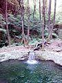 Смоларски водопад 5.jpg