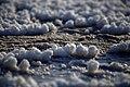 تصاویر دریاچه نمک حوض سلطان در استان قم 34.jpg