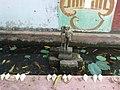 மாவிட்டபுரத்தில் கைவிடப்பட்ட நிலையில் உள்ள சிலை ஒன்று.JPG