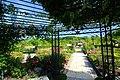 えこりん村 銀河庭園(Ekorin village, Galaxy Garden) - panoramio (10).jpg