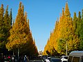 明治神宮外苑の銀杏並木 (Ginkgo Trees at Meijijingu Gaien) 28 Nov, 2009 - panoramio.jpg