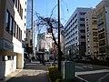 明治通り - panoramio - kcomiida (2).jpg
