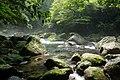 菊池渓谷 20130815 - panoramio.jpg