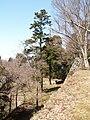 高取城跡(takatorijyou ato) 2010-3-19 - panoramio - ys1979 (8).jpg