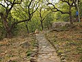 龙潭山路 - Path to the Dragon Pool - 2012.04 - panoramio.jpg