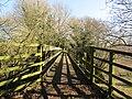 -2019-02-26 Weaver's Way footbridge over North Walsham and Dilham Canal, Briggate, Norfolk.JPG