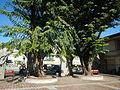 01261jfCabanatuan Church Parish Talavera Nueva Highwayfvf 11.JPG