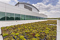06-29-2015 CHS green roof-2-4.jpg