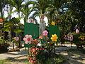06046jfVirgen Milagrosa Rosario Seminary Balanga City Bataanfvf 04.JPG