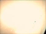 09-352.37.41 VMC Img No 5 (8268378347).png