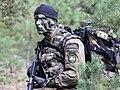 11 Dywizja Kawalerii Pancernej - rok 2010 (05).jpg
