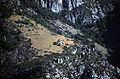 129F Gorges du Verdon (15832717330).jpg