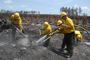 164th Air Defense Artillery Brigade (United States) - 164th Air Defense Artillery Brigade soldiers help put out a wildfire.