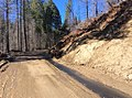 170405-FS-STF-CA-Cottonwood 1N04-013 (34289731975).jpg