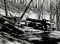 1938. Loading log truck with a shovel. Coates operation. Tillamook Burn, Oregon. (33177532584).jpg