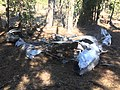1947 Snell crash wreckage 10 - Fremont NF Oregon.jpg