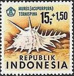 1969 Indonesia stamp Murex ternispina.jpg